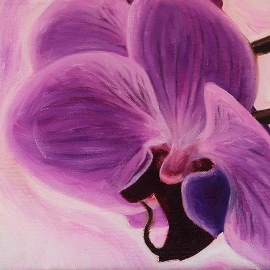 036. Violett orkide, 20 x 20 cm