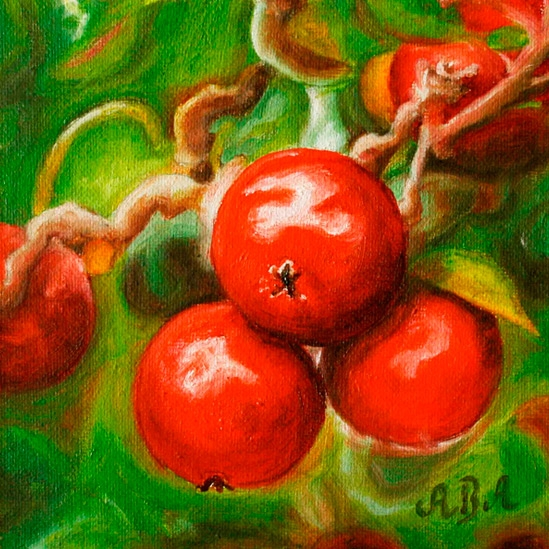 062. Epler på grein, 15 x 15 cm